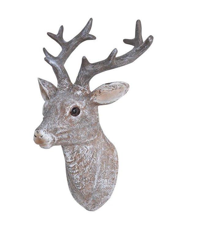 Small Deer Head Mount