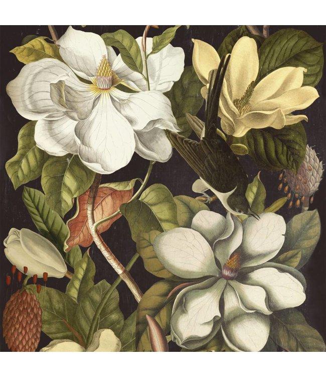 MIND THE GAP Magnolia