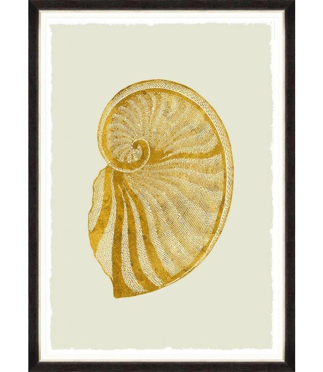 MIND THE GAP Golden Seashell II