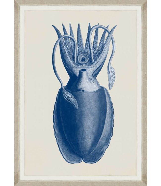 MIND THE GAP Cuttlefish Blue