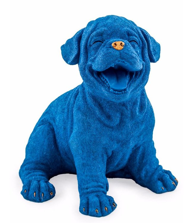 McGowan & Rutherford Laughing Royal Blue Puppy