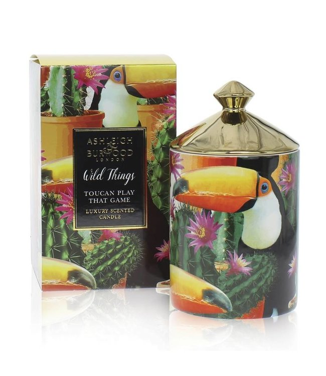 Ashleigh & Burwood Wild Things Toucan play at that game Candle