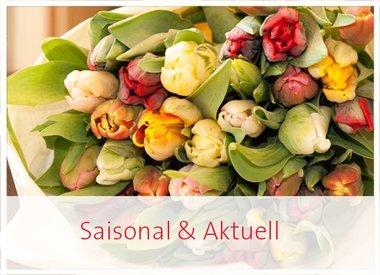Saisonales - Frühling