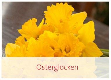Osterglocken