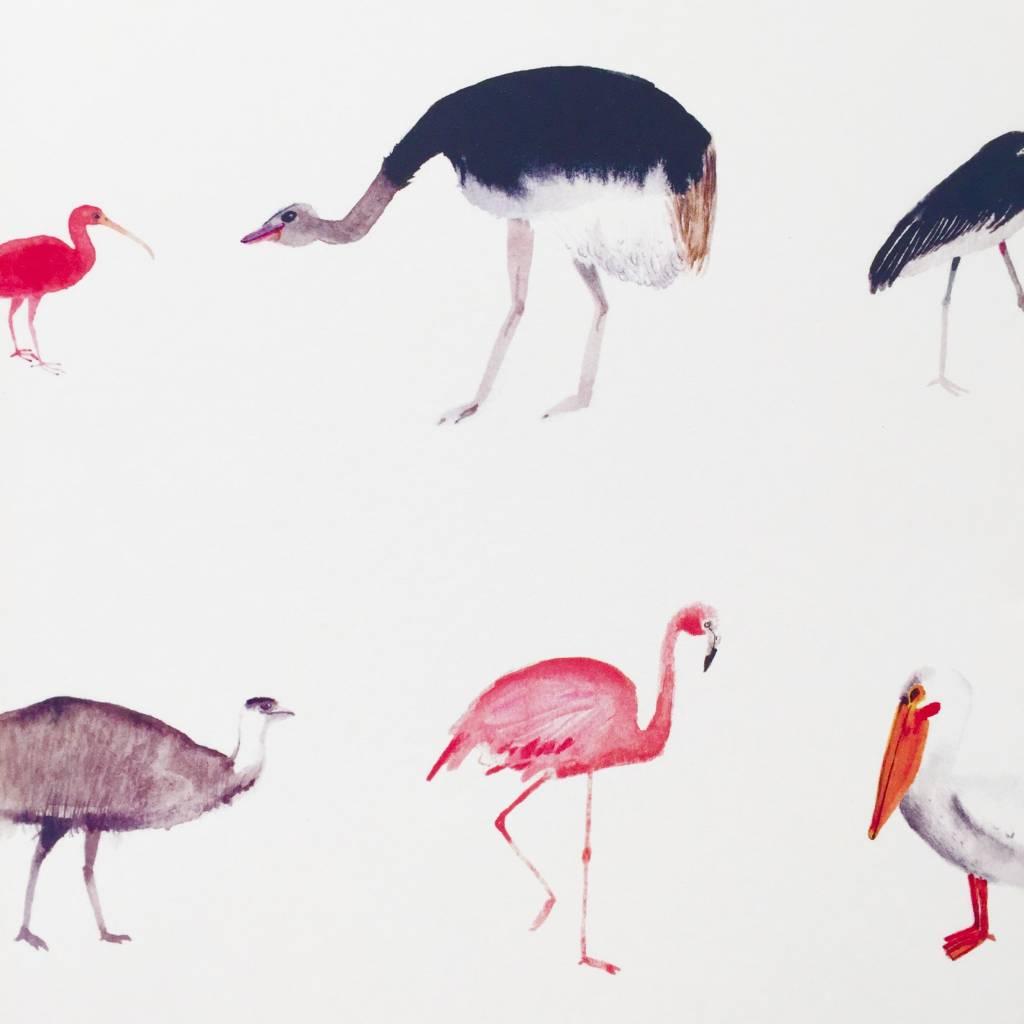 JOUJOU big birds poster a4