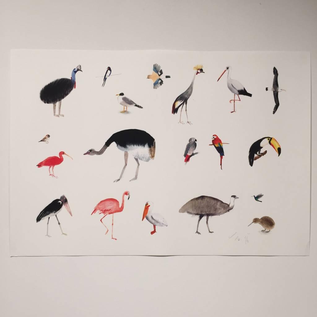 JOUJOU big birds poster A2