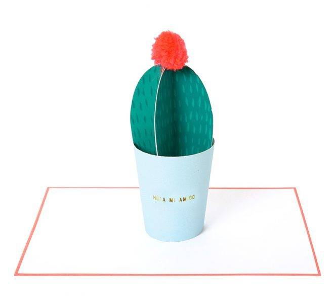 MERIMERI Hola mi amigo cactus card