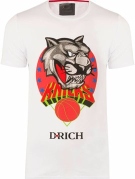D-Rich Basketball