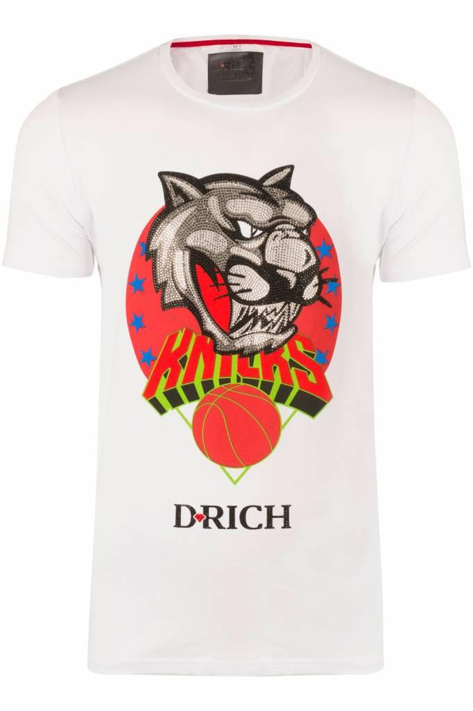 D-Rich Basketball