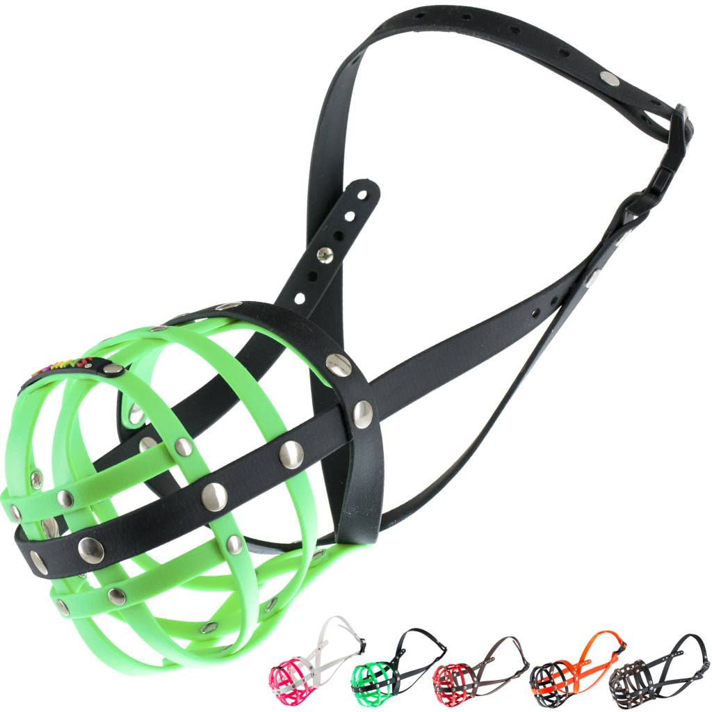 BUMAS - das Original. BUMAS Muzzle for Rhodesian Ridgebacks made of BioThane®, neon green/black