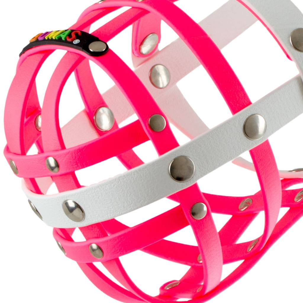 BUMAS - das Original. BUMAS bozal a medida de BioThane® para un Border Collie, rosado/negro