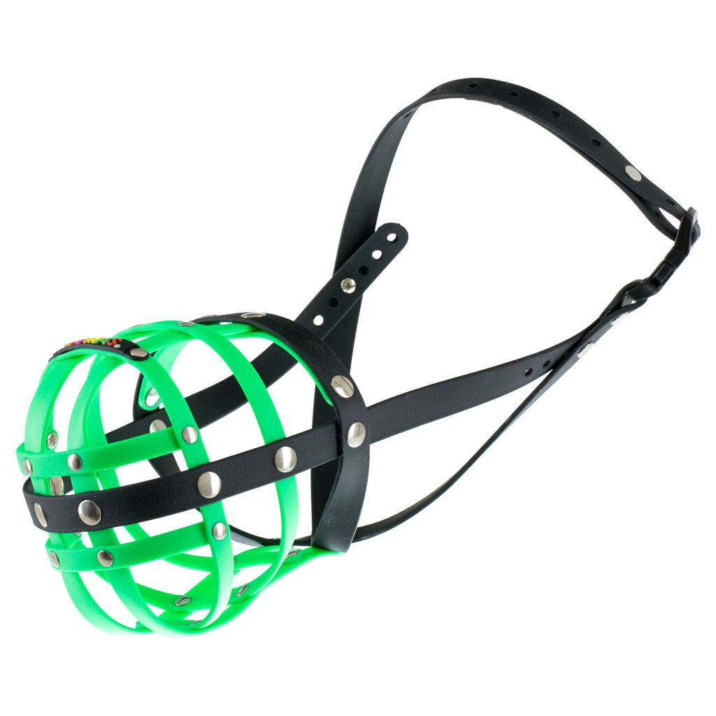 BUMAS - das Original. BUMAS muzzle made of Biothane® Size 8 in neon green/black (U 30cm / L 11cm)