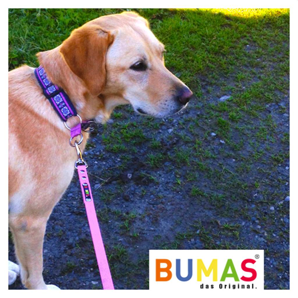 BUMAS - das Original. BUMAS - control - lead made with BioThane® in light brown