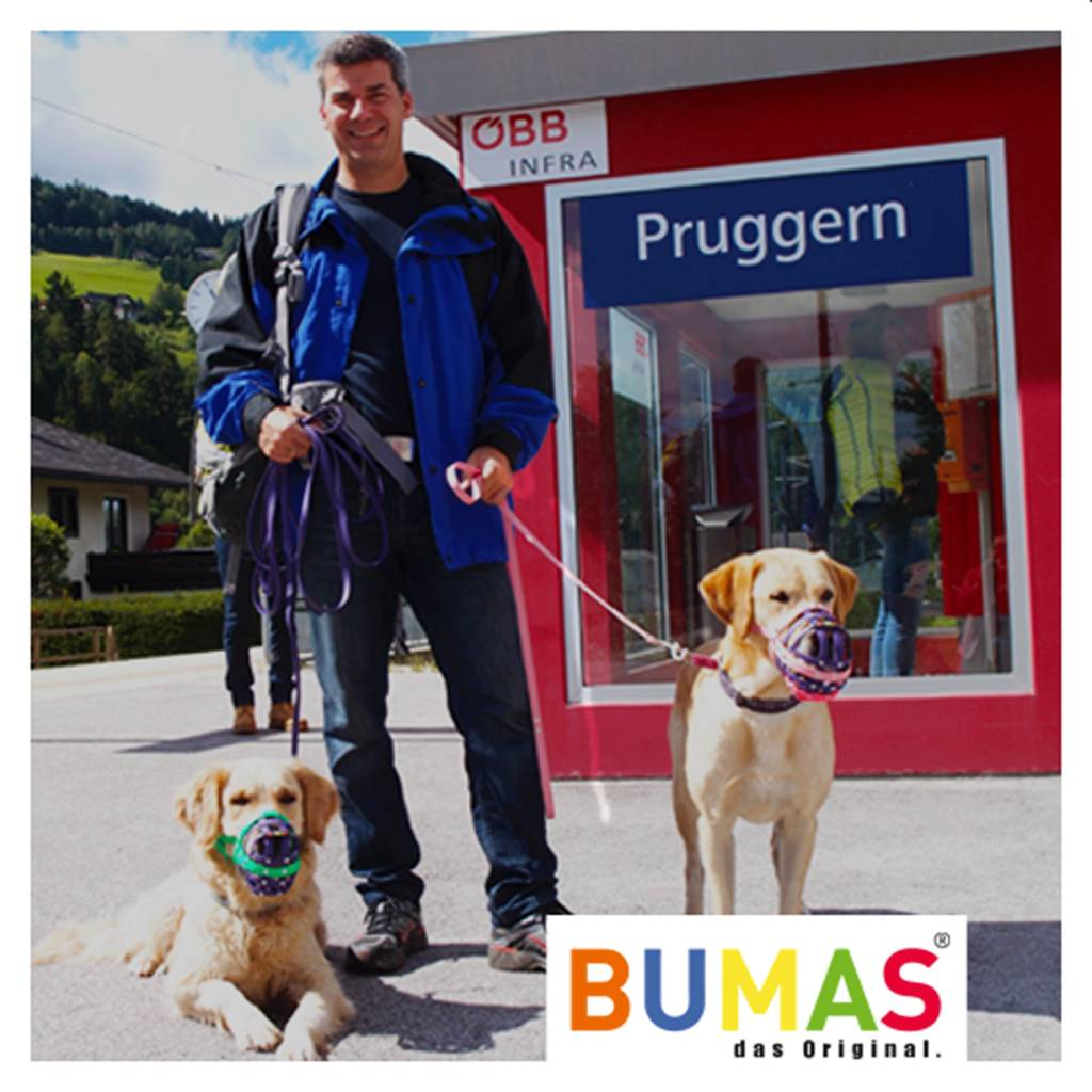 BUMAS - das Original. BUMAS - easy going - leash made of BioThane® in light brown