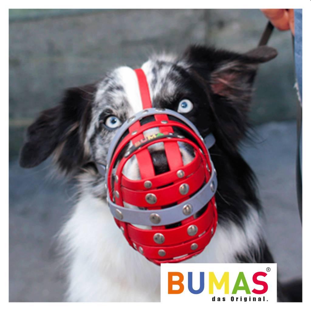 BUMAS - das Original. BUMAS Maulkorb für Border Collie aus BioThane®, schwarz/neonorange
