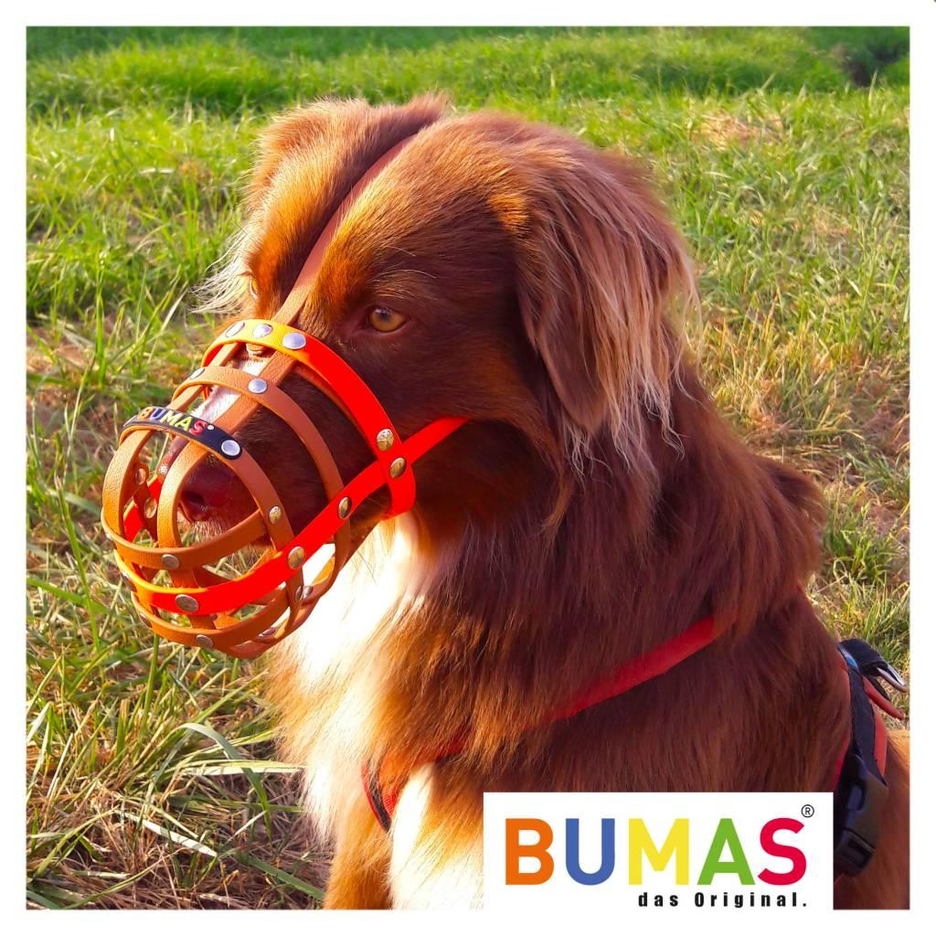 BUMAS - das Original. BUMAS Muzzle for Border Collies made of BioThane®, black/neon orange