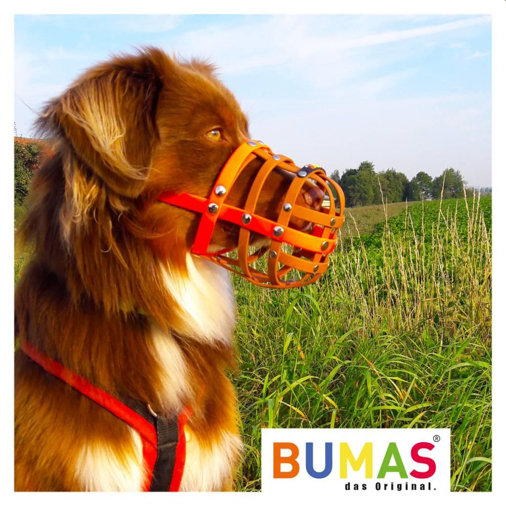 BUMAS - das Original. BUMAS Maulkorb für Australian Shepherd aus BioThane®, rot/braun