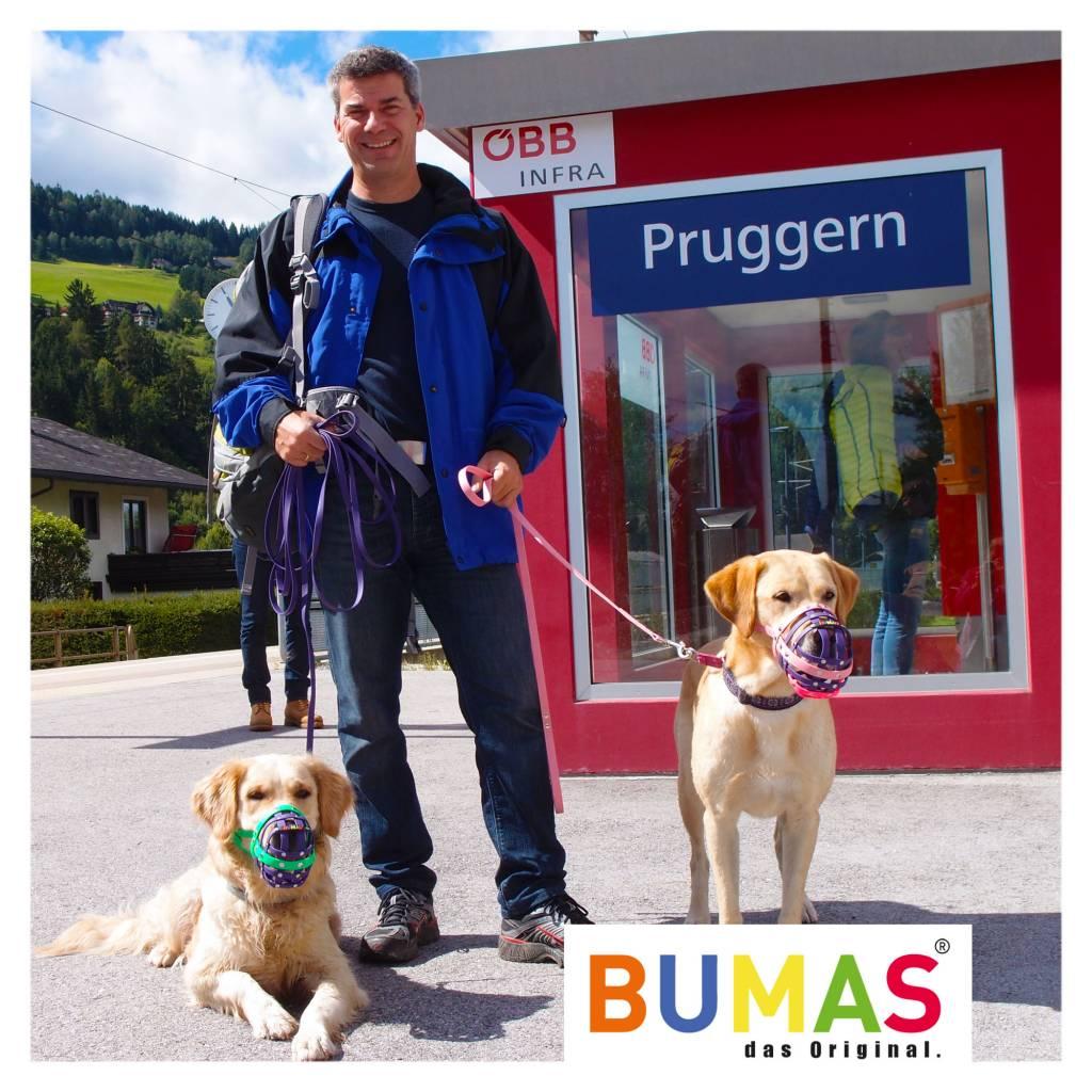 BUMAS - das Original. BUMAS - easy going - Führleine aus BioThane® in pink