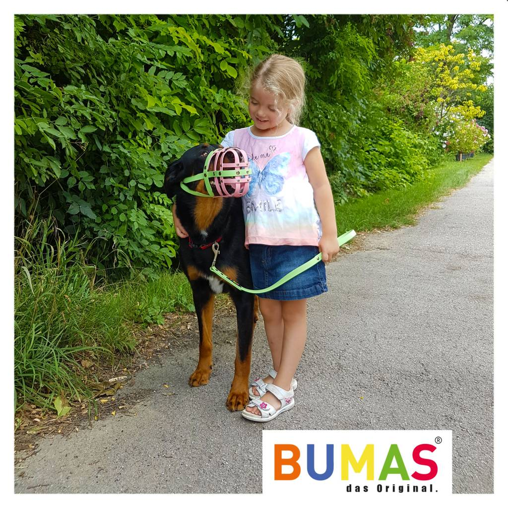 BUMAS - das Original. BUMAS - control - der Kurzführer aus BioThane® in braun