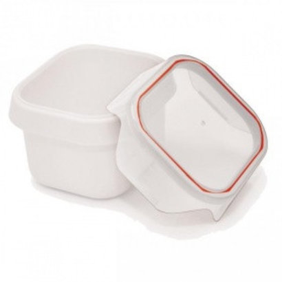 IRIS Essensbehälter Easy Klick - Auslaufsicher 0,45l