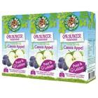 Cassis-Appel  Fruit Drink 3 x 200ml