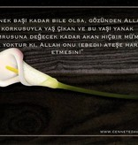 Türkische Postkarte - PK18