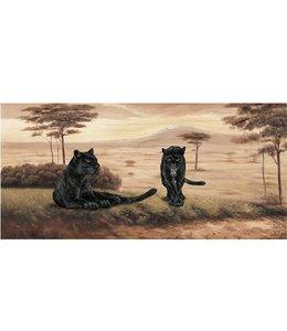 Ingelijste Posters: Twee Zwarte Jaguars