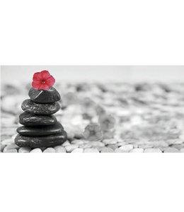 Ingelijste Posters: Zen Rode bloem op stenen