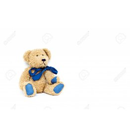 Fluffy Brown Blue Bear