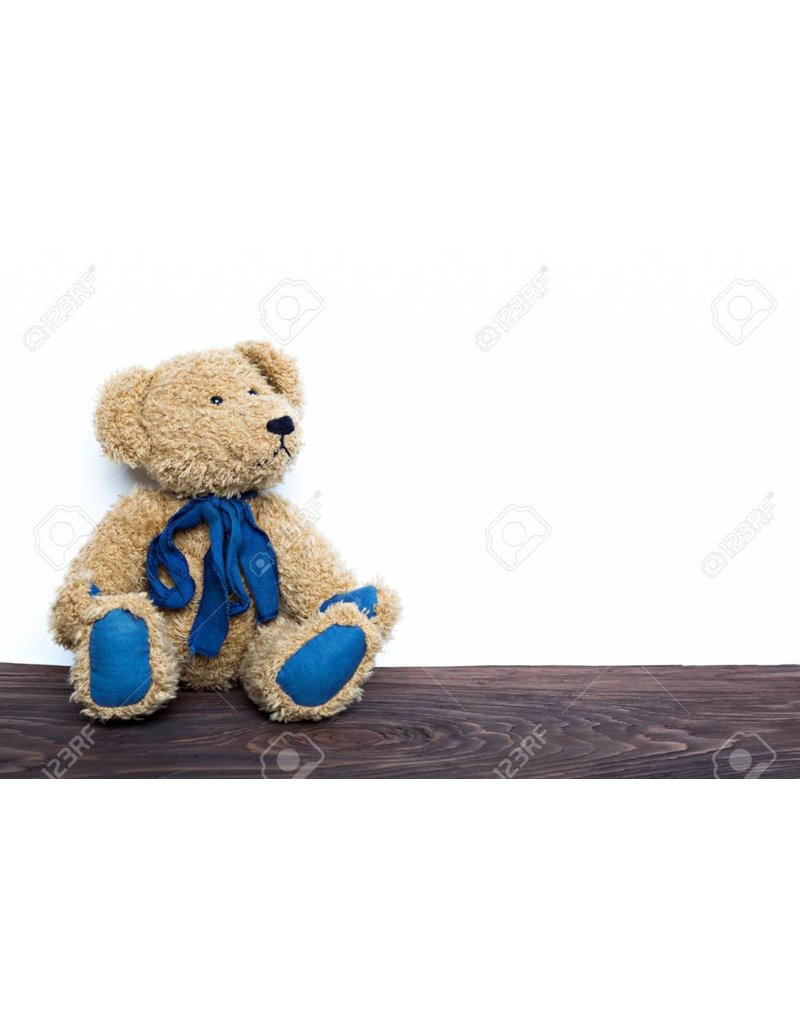 Fluffy Brown Blue Bear