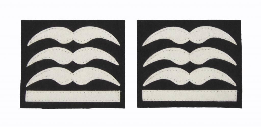 Luftwaffe Hauptmann Dienstgradabzeichen Schwingen
