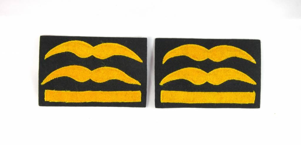 Luftwaffe Generalleutnant Dienstgradabzeichen Schwingen