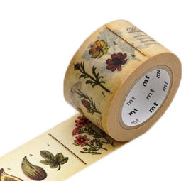MT  MT masking tape ex encyclopedia plant