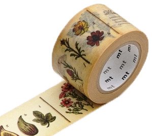 MT masking tape ex encyclopedia plant
