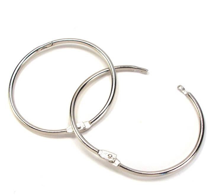 {Journal} grote ringen