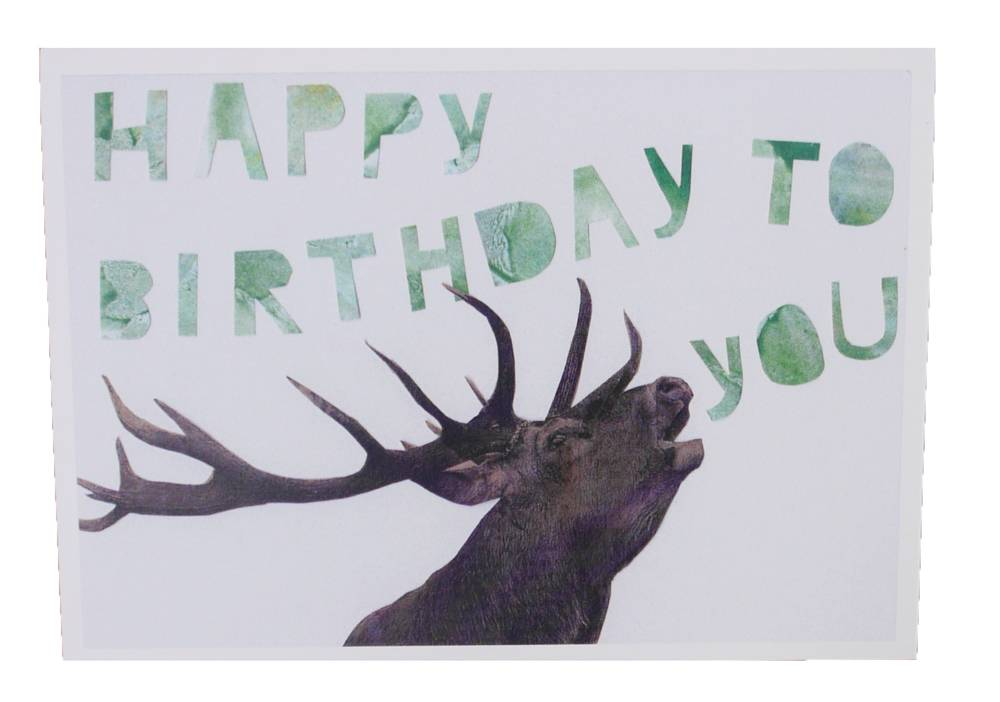 Happy birthday hert