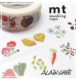 MT  MT masking tape ex Alain Grée plant