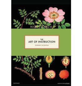 Chronicle books Notebook set Art of instruction