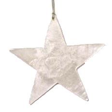 Kersthanger ster zilver
