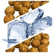 MTC Baits Freezer Bait - NutCase - 25 kg