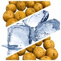 MTC Baits Freezer Bait - Sweet ScopeX - 2,5 kg