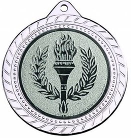 M  88-50 Medaille