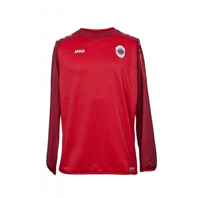 Antwerp Training Sweater