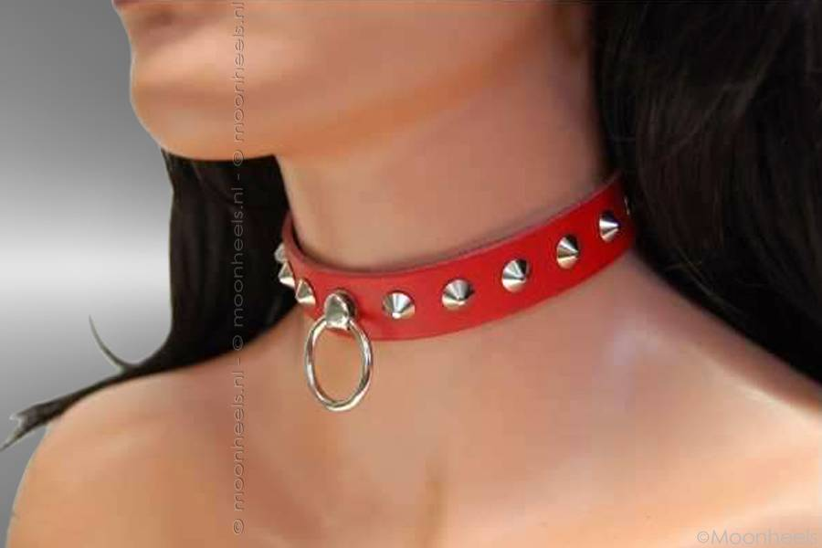Chique halsband/collar: 2