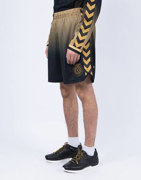 Hummel Hummel 24 Kilates Shorts