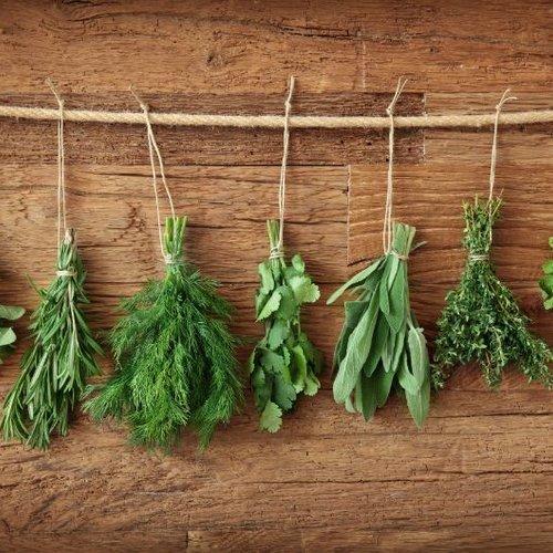 3 Tips: voor het drogen van je eigen verse kruiden