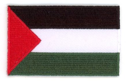 flag patch Palestine