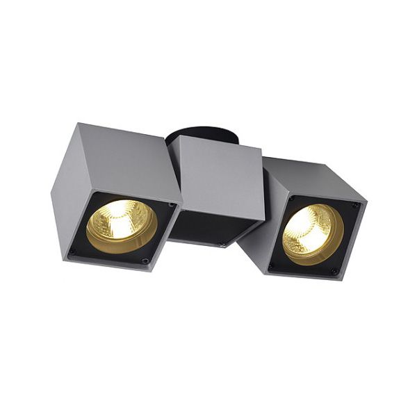 ALTRA DICE SPOT 2, plafond armatuur, zilvergrijs/zwart, 2x GU10, max. 2x 50W