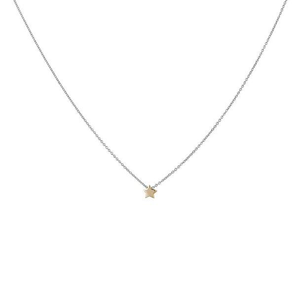 Gouden collier - hanger - ster