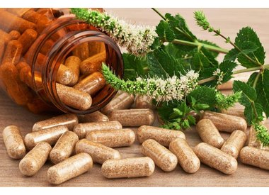 Herbs / Kruiden